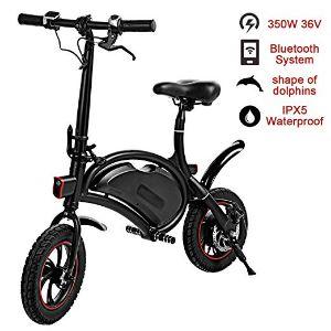 Shaofu Folding Electric Bicycle