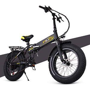 ENGWE PLID-1 Beach Fat Tire Electric Bike